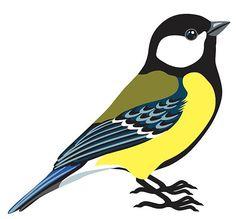 Saveur, Blue Jay, Bird, Animals, Animales, Animaux, Birds, Animal, Animais