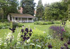 garden by Studio TOOP Carrie Preston Landscape Design, Garden Design, Foundation Planting, Formal Gardens, Portfolio, Preston, Beautiful Gardens, Garden Landscaping, Carry On