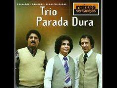 Coletânea de Musicas Do Trio Parada Dura