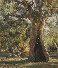A Sunburnt Country by John McCartin Oil ~ 70cm x 60cm