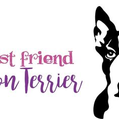MY BEST FRIEND IS A BOSTON TERRIER pink purple 2