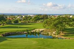 All Fore Golf (Unlimited) in Barbados