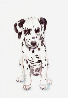 Louise De Masi | WATERCOLOR | Dalmatian Puppy