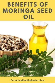 11 Health Benefits of Moringa Seed Oil for Kids and Nursing Moms Moringa Benefits, Oil Benefits, Health Benefits, Moringa Oil, Milk Supply, Health And Beauty Tips, Seed Oil, Seeds, Healthy Recipes