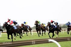 Bourbon, Beer & Burger Festival, Turffontein Racecourse, JHB Bourbon Beer, Beer Burger, Travel Around, South Africa, Places To Go, Horses, Animals, Animaux, Animales