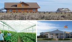 No-Toxic-Pesticides-or-GMOs-Allowed-Here