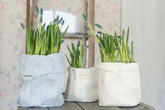 Kodin Kuvalehti – Blogit | Ruususuu ja Huvikumpu – Tee itse paperipusseista sulosimmat ruukut kevätkukille