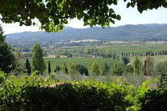 # Tuscany, #Italy, #Fattorialavialla Tuscany Italy, Vineyard, Outdoor, Destinations, Viajes, Outdoors, Vine Yard, Vineyard Vines, Outdoor Games