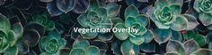 Tiny Trend #4: Vegetation Overlays