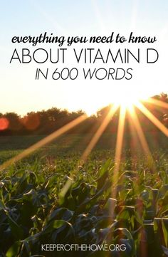 Does reading about Vitamin D make your head spin? Here's everything you need to know about this vital nutrient in just 600 words!