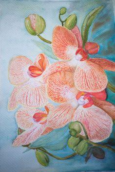 Mis Orquídeas Favoritas por PinturasElia en Etsy