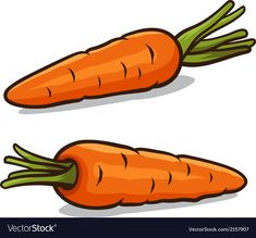 Carrot vector image on VectorStock Carrot Drawing, Vegetable Crafts, Vegetable Drawing, Halloween Crochet Patterns, Shapes For Kids, Fruits Photos, Fruit Painting, Cute Clipart, Cute Images