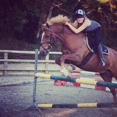 So much work to do to improve myself but man this horse is so so patient with me.  #myboy #rustyroo #love #love #love #jumping #equine #tinyjump #hehe
