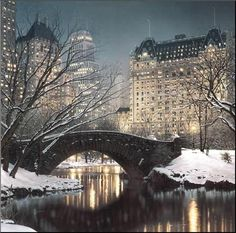 I cant imagine anything more beautiful than winter in Central Park, NYC. Rod Chase, Twilight in Central Park Oh The Places You'll Go, Places To Travel, Places To Visit, Travel Destinations, Empire State, Central Park New York, Central City, Art Central, New York Weihnachten