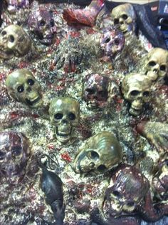 Pinner said: Scary skull wall made from dollar store skulls, great stuff and paint. Less then $25 so proud of myself