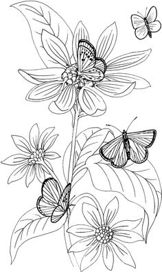Vintage Patterned Coloring Pages | Butterfly Coloring Pages 17 | Purple Kitty
