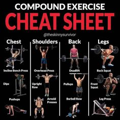 How does a compound workout compare to an isolation workout?