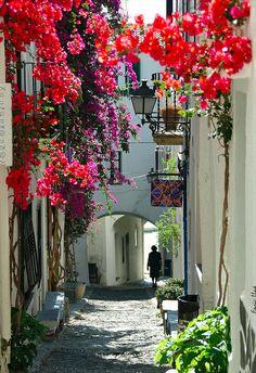 A flowered passage through Catalonia, Spain