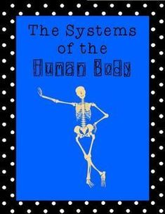 Systems of the Human Body--Unit on Inquiry, Note-taking, Performance-based assessment Kinesthetic, spatial and linguistic Human Body Unit, Human Body Systems, Human Human, Health And Physical Education, Science Education, Teaching Science, Classroom Procedures, Classroom Ideas, Ib Classroom