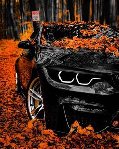 Cars Discover Bmw its best Bmw Suv Bmw Gts Audi Cars Carros Mercedes Benz Mercedes Benz Autos 4 Door Sports Cars Sport Cars Bmw Wallpapers Bmw Autos Carros Lamborghini, Carros Audi, Lamborghini Cars, Audi Cars, Audi Audi, Bmw Suv, Dodge Suv, Acura Suv, Hyundai Suv
