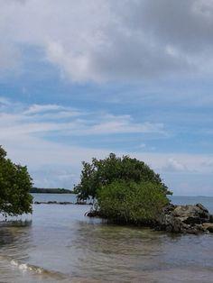 Reserva natural medio mundo, ceiba, Puerto Rico