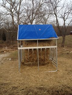 We purchase this covered cradle round bale feeder for the goats. Mike will build a steel roof this summer. The blue tarp was the best we could do while building the mill