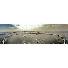 #Photo _saaraayy_ #ametllademar #ametllamar #terresdelebre #tarragona #catalunya #catalogne #cataluña #catalonia #pesca #fishing #pêche #platja #playa #plage #beach #estiu #verano #été #summer #sun #vacances #vacaciones #holiday #traveling #viajes #travel #visit #eatheword #vamosdeviaje #voyage #escapadas #experiences #traveller #food #gastronomia #gastronomy #happyholidays #mediterrani #mediterraneo #mediterranean #visiting #vacation #trip #tourism #tourist #reservadelabiosfera