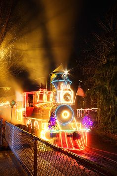 Oregon Zoo, Portland, Oregon. Zoo Lights.  An annual tradition in many families is to go on a train ride at Zoo Lights during the holidays.  The whole zoo is lit up in millions of lights.