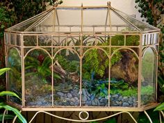 A Wardian case is closed glass house that was invented by Nathanial Ward in 1829.