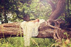 durant oklahoma photographer newborn baby laying on tree. Outdoor newborn photography. Oklahoma baby photography