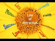 Law of attraction classes http://101how.com/manifestation-miracle