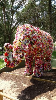 A superb floral elephant! Topiary Garden, Garden Art, Garden Plants, Most Beautiful Gardens, Amazing Gardens, Rare Flowers, Beautiful Flowers, Image Elephant, Garden Living