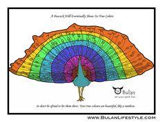 Sketch of the day no 219: Pedro the Peacock in full technicolour #TGIF