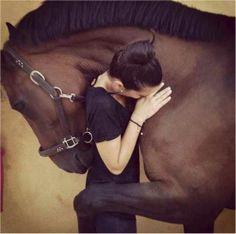 verliefd paard
