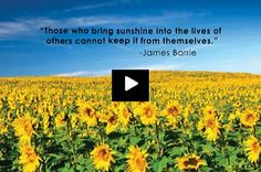 This video is about happiness. How much can you give to be happy ? Watch this video and join