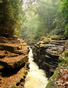 Apertado - Pimenta Bueno Rondonia Brasil