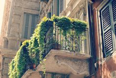 balcony, garden, cozy, flower - inspiring picture on Favim.com