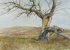 Indian Summer #realism #matsoureff #watercolor #landscape #nature #watercolorartist #watercolorpainting #art #painting #worksonpaper #акварель #aquarelle
