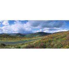 Road Through A Mountain Range County Wicklow Republic Of Ireland Canvas Art - The Irish Image Collection Design Pics (30 x 12)