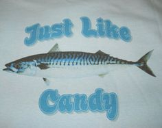 Wicked Good Tuna Fishing T-Shirts Wicked Good Tuna Tees by stripedbass Tuna Fishing, Fishing Tips, Bottom Fishing, Just Like Candy, Wicked Good, Fish Swimming, Beautiful Fish, Fishing T Shirts, Bait