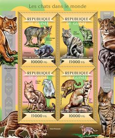 Post stamp Guinea-Bissau GU 15103 aCats of the World (Chartreux, Southern African wildcat, {…}, Andean mountain cat, the Pampas cat)