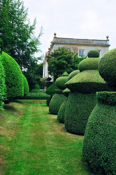 the topiary chess garden - Haseley Court Oxfordshire - one of the most iconic gardens in Britain Modern Landscape Design, Modern Landscaping, Garden Landscaping, Landscaping Design, Landscape Architecture, Unique Garden, Garden Art, Smart Garden, Garden Whimsy