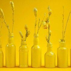 Yellow flowers and bottles Yellow Theme, Yellow Art, Yellow Walls, Mellow Yellow, Color Yellow, Rainbow Aesthetic, Aesthetic Colors, Aesthetic Yellow, Lemon Yellow