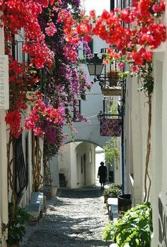 Gasse in Katalonien, Künstlerdorf, wo schon Picasso und Dali Urlaub machten. Places Around The World, Oh The Places You'll Go, Places To Travel, Places To Visit, Around The Worlds, Granada, Wonderful Places, Beautiful Places, Beautiful Flowers
