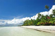 bohol resorts, bohol beach resorts, panglao beach resorts, cheap panglao island resorts, affordable panglao island resorts, alona beach resorts, affordable alona beach resorts in bohol