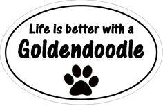 Life is better with a Goldendoodle!