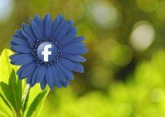"""Facebook+lockert+die+Promotion+Guidelines+für+Facebookseiten:+Ab+sofort+dürfen+in+der+Pinnwand+von+Facebook-Seiten+""""Gefällt+mir""""-Angaben+und+Kommentare+zu+einer+Gewinnspiel-Teilnahme+genutzt+werden.+Das+erhöht+den+Dialog+und+die+Reichweite+der+Marke,+birgt+aber+auch+Gefahren,+die+man+beachten+sollte.+Hohe+Interaktion+Was+kostenlos+ist+oder+verlost+wird,+kommt+…"""