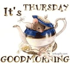 It's Thursday, Good Morning gif good morning thursday thursday quotes good… Good Morning Happy Thursday, Good Morning Picture, Good Morning Love, Morning Pictures, Morning Wish, Thankful Thursday, Morning Images, Hello Thursday, Thursday Humor