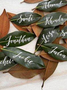 Leaf place cards Magnolia leaf place cards are a popular choice for an outdoor or rustic wedding. Wedding Table Name Cards, Wedding Place Names, Wedding Place Settings, Wedding Places, Diy Wedding Name Place Cards, Diy Table Cards, Card Wedding, Wedding Tables, Wedding Pins
