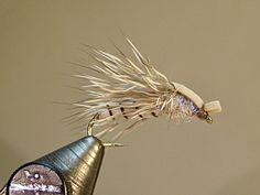Henry's Fork Spruce Moth SBS